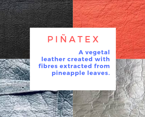A graphic showing pinatex, an ethical fashion leather alternative