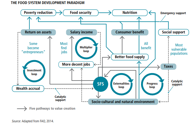 A flow chart showing the food system development paradigm by FAO